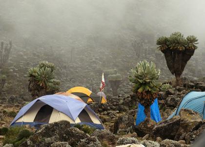 Hyggelig teltlejr i flotte omgivelser