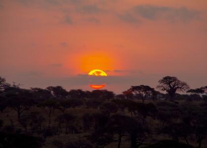 Fra terrassen kan du se solen gå ned i parken